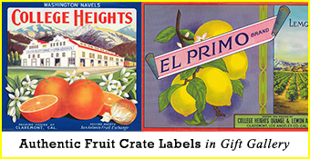 Fruit Crate Labels for sale
